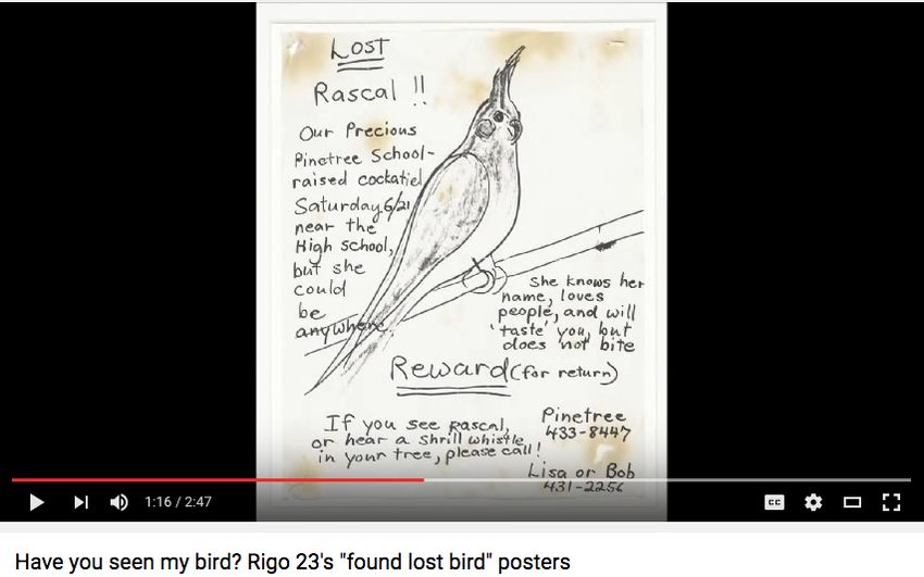 An Screen Shot Of A Youtube Video With An Image Of A Poster For A Lost