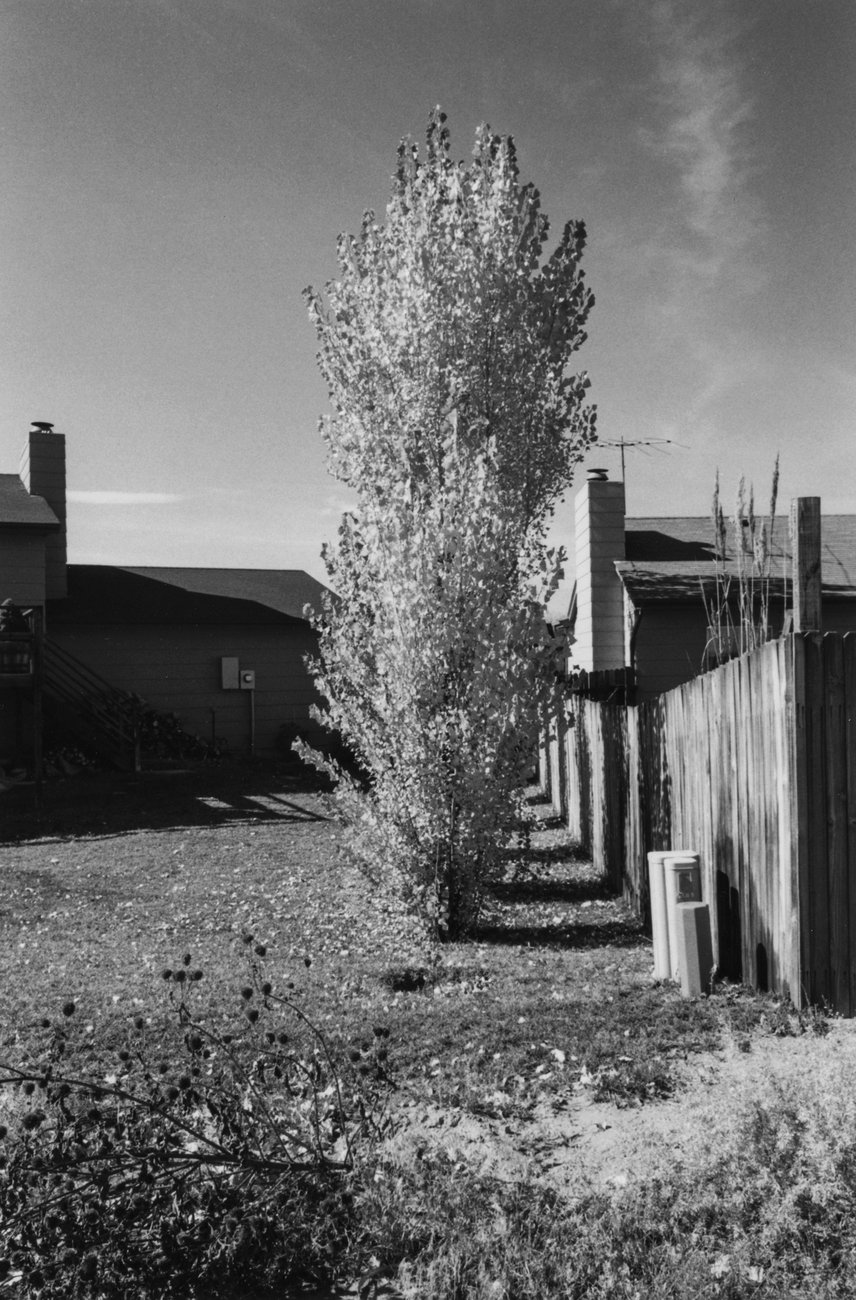 Artwork image, Robert Adams's Arvada, Colorado, from the series Gone? Colorado in the 1980s