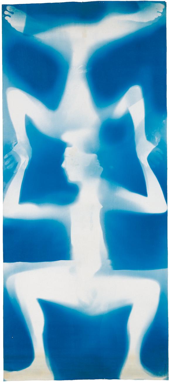 Artwork image, Robert Rauschenberg, Untitled (Double Rauschenberg)