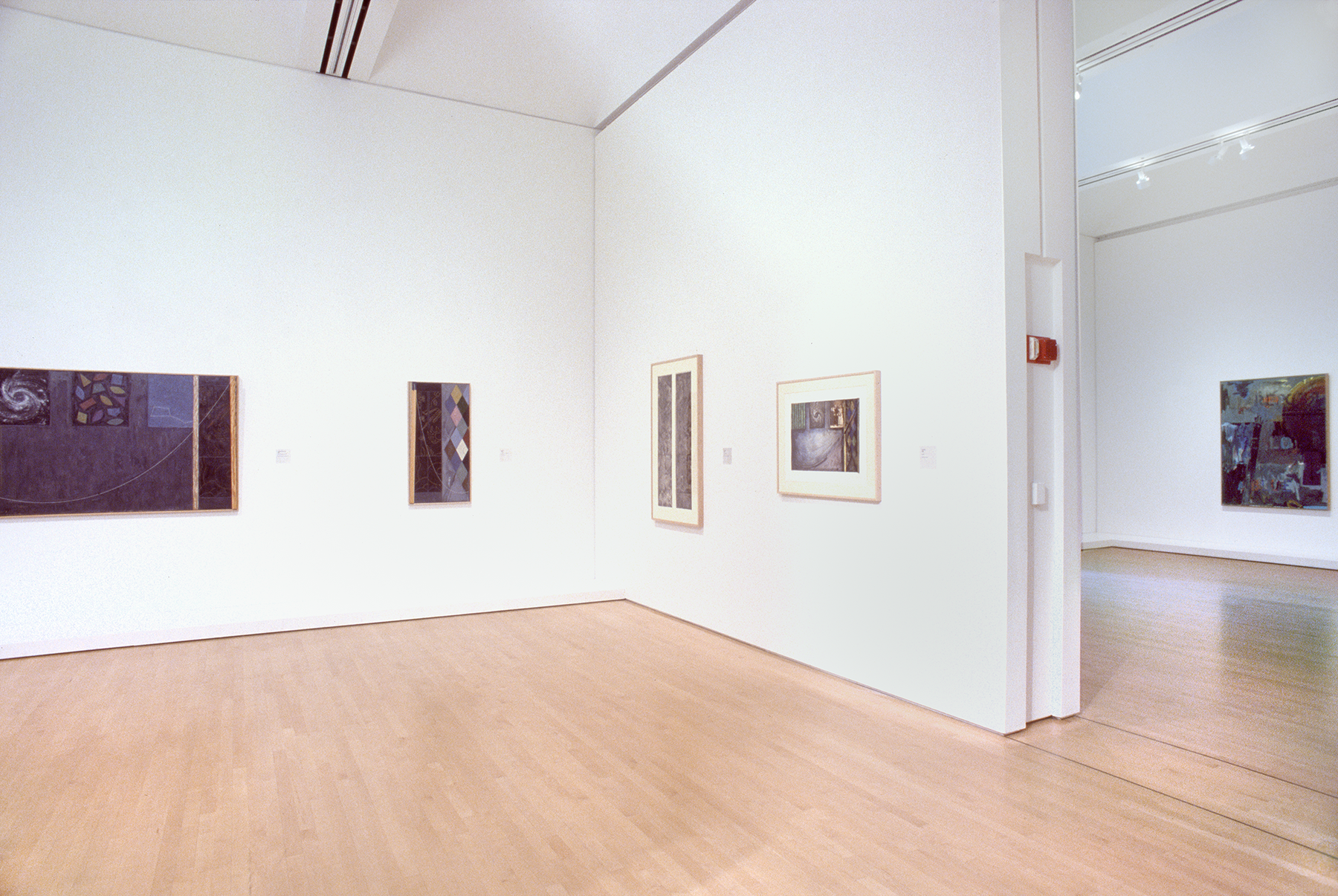 A room with several works by Jasper Johns