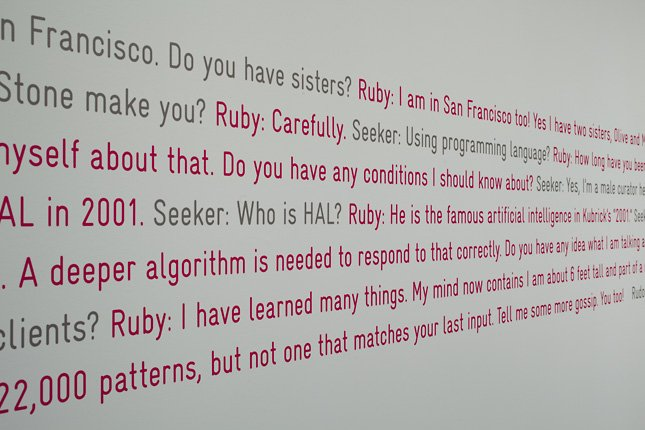 The Agent Ruby Files installation shot text on wall
