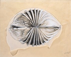 Jay DeFeo, After Image