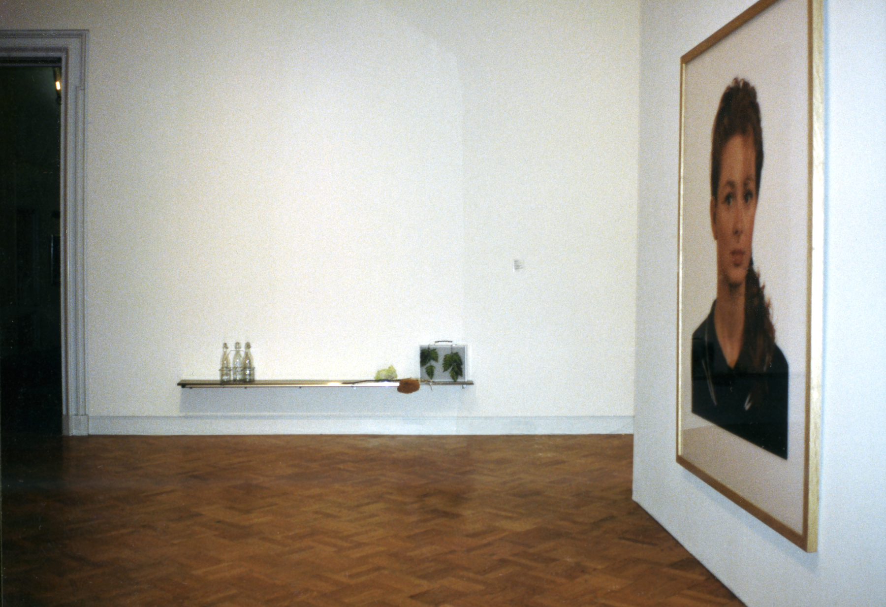 A gallery with a framed portrait of a woman, a metal briefcase with leaves on it, and bottles placed on a shelf.