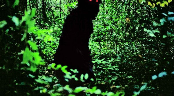 Apichatpong Weerasethakul, Uncle Boonmee Who Can Recall His Past Lives (still), 2010; image: courtesy Strand Releasing