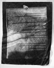 Artwork image, Paul Sietsema; The Famous Last Words