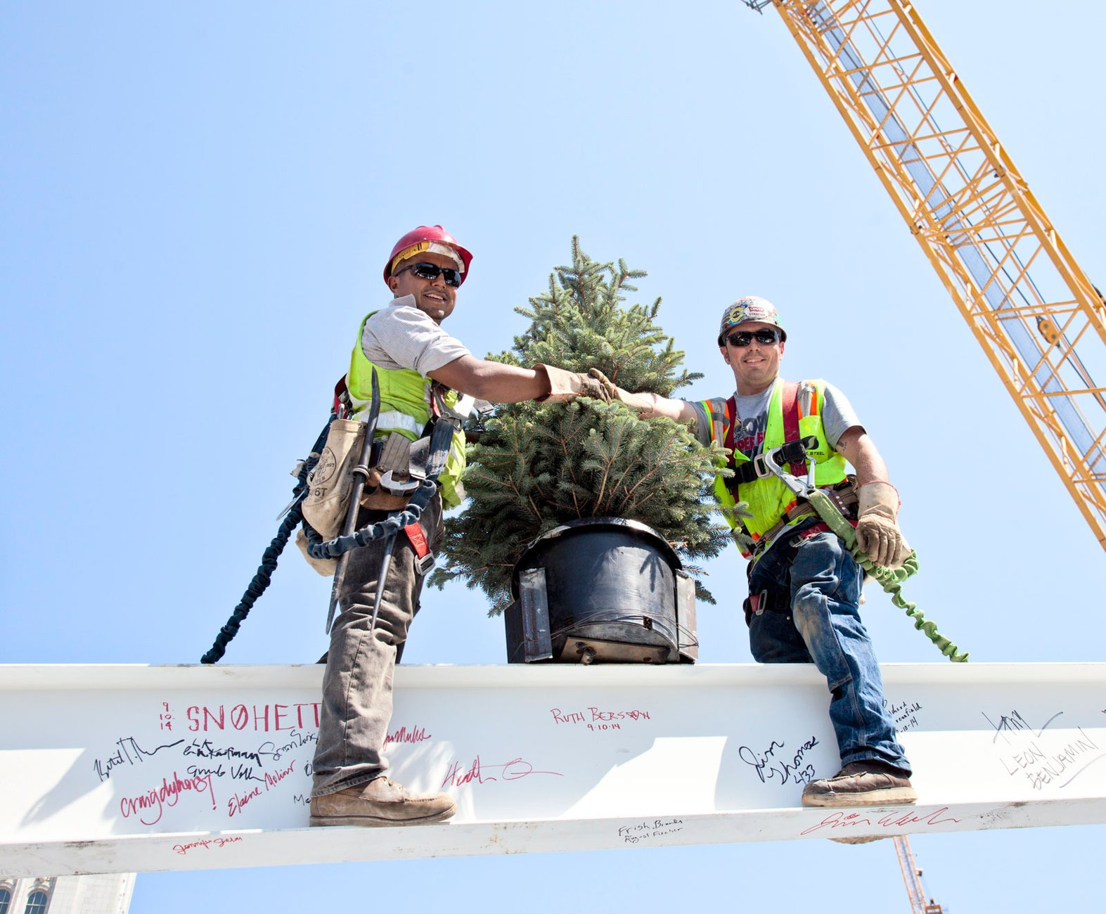 Construction workers install a tree at the topping out ceremony