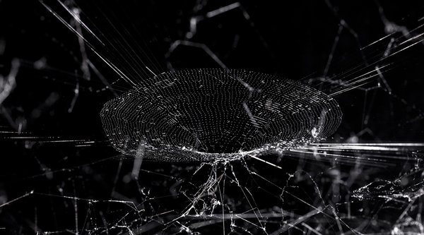 A spider web on a black background