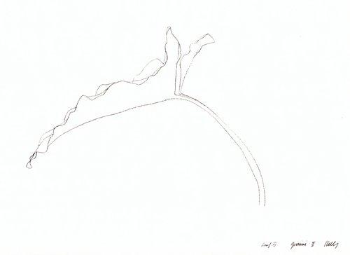 Leaf XI