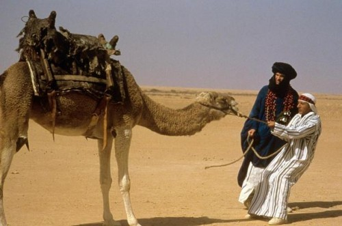 ishtar-blind-camel-2