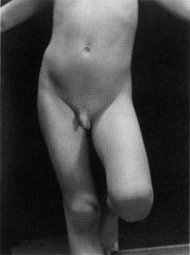 Sherrie Levine, Untitled (After Edward Weston), 1981
