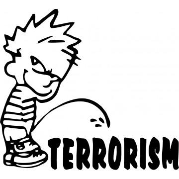 Terrorism Calvin