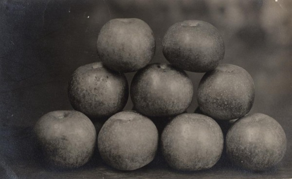 Unknown, Untitled [Stack of apples], 1911