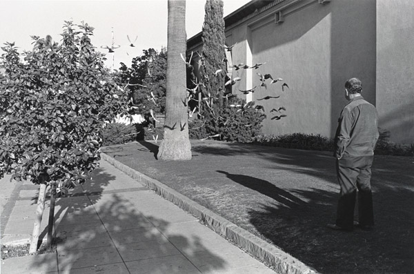 Henry Wessel, Untitled, from the portfolio New California Views, 1977