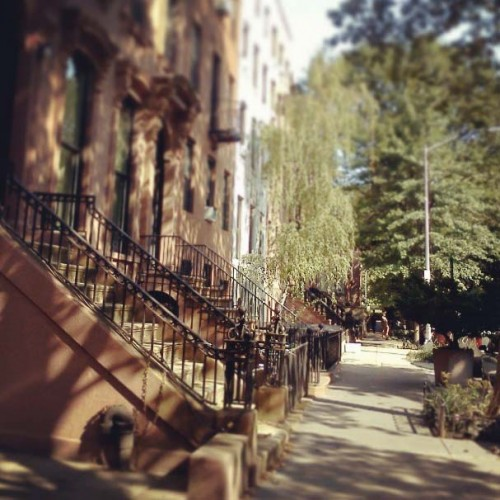 View of Brownstones in the Fort Greene neighborhood of Brooklyn.