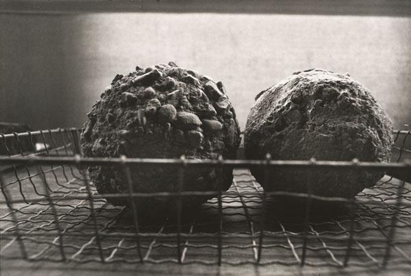 David Ireland, Concrete Acorns in Wire Basket, 1993