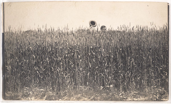 Unknown, Untitled [Man holding a hat, concealed in a wheat field], n.d.
