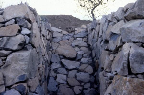 Dennis Leon, Sibley Mound (detail), 1980