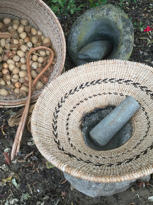 "These two work baskets were created with the support of a second Creative Work Fund grant. The bottomless ""Pechump Tiprin"" or hopper basket, was adhered to a mortar's rim with a thick ring of tar. The basket holding acorns is a ""Shiiwen"" or carrying basket. These were the first of their kind to be made in about 150 years. Photo by Linda Yamane."