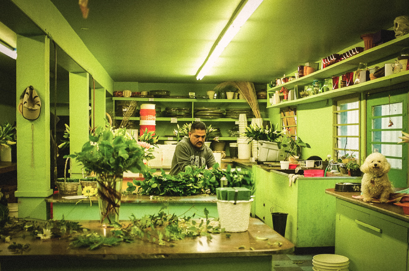 Tony Rossi Sons Florist, Fruitvale Avenue. Photo by Elizabeth Holzer.