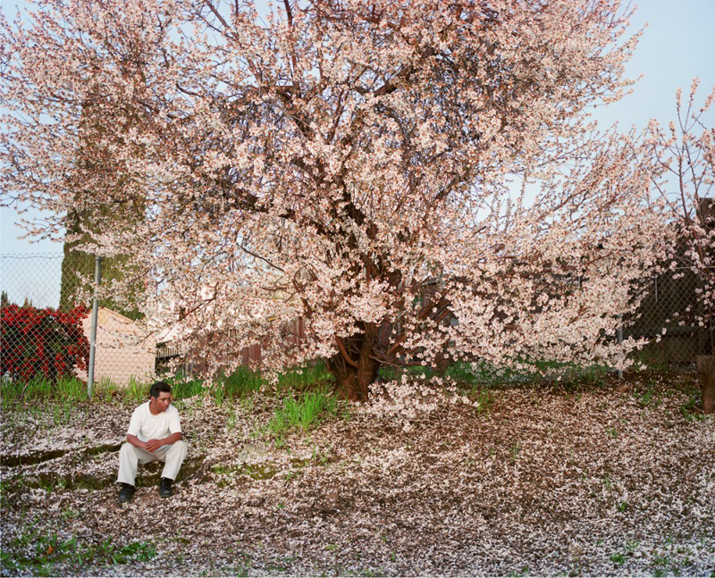 Larry Sultan, Antioch Creek, 2008. Courtesy The Estate of Larry Sultan and Casemore Kirkeby.