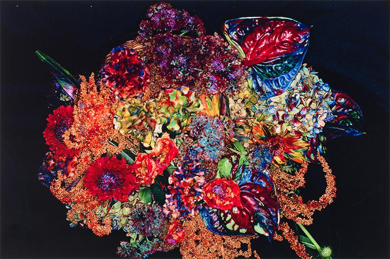 Nobuyoshi Araki, Painting Flower, 2004