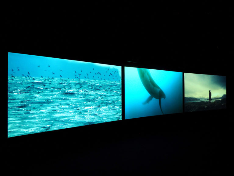 John Akomfrah, Vertigo Sea, 2015; three channel HD color video installation, 7.1 sound, 48 minutes 30 seconds; © Smoking Dogs Films; courtesy Lisson Gallery.