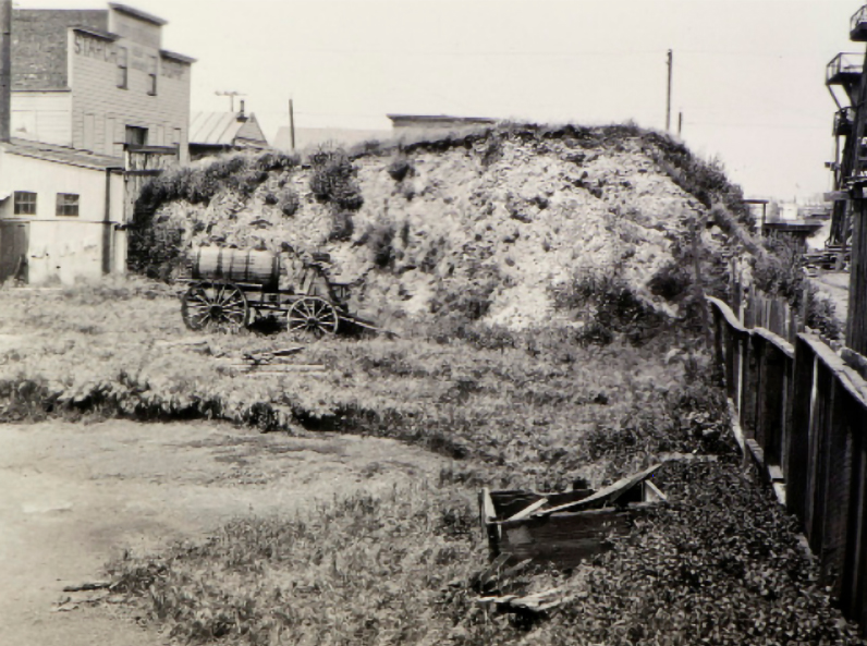 West Berkeley Shellmound, photographed by Nels Nelson, 1907. Courtesy of the Division of Anthropology, American Museum of Natural History.