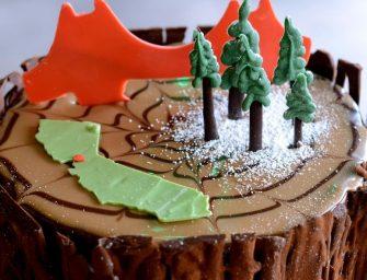 家庭歡聚時光一波接一波~是時候預訂聖誕節蛋糕囉!