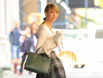 2015年Top10最多人按讚的IT~她的天下!