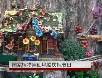国家植物园仙境般庆祝节日