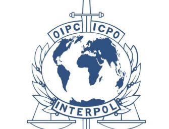 什么是红通?国际刑警组织干什么?