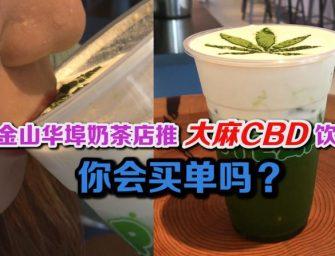 旧金山华埠奶茶店推出大麻CBD饮品 你会买单吗?