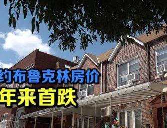 纽约布鲁克林房价下跌  地产业者:小户型更受购房者青睐