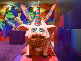 """快閃博物館""""糖果烏托邦""""來到舊金山——這裡有一個棉花糖泳池哦"""