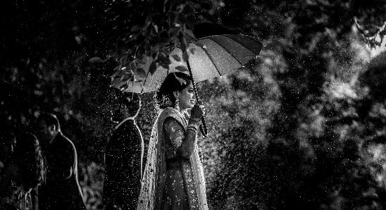 Portfolio - vivekkrishnan Photography