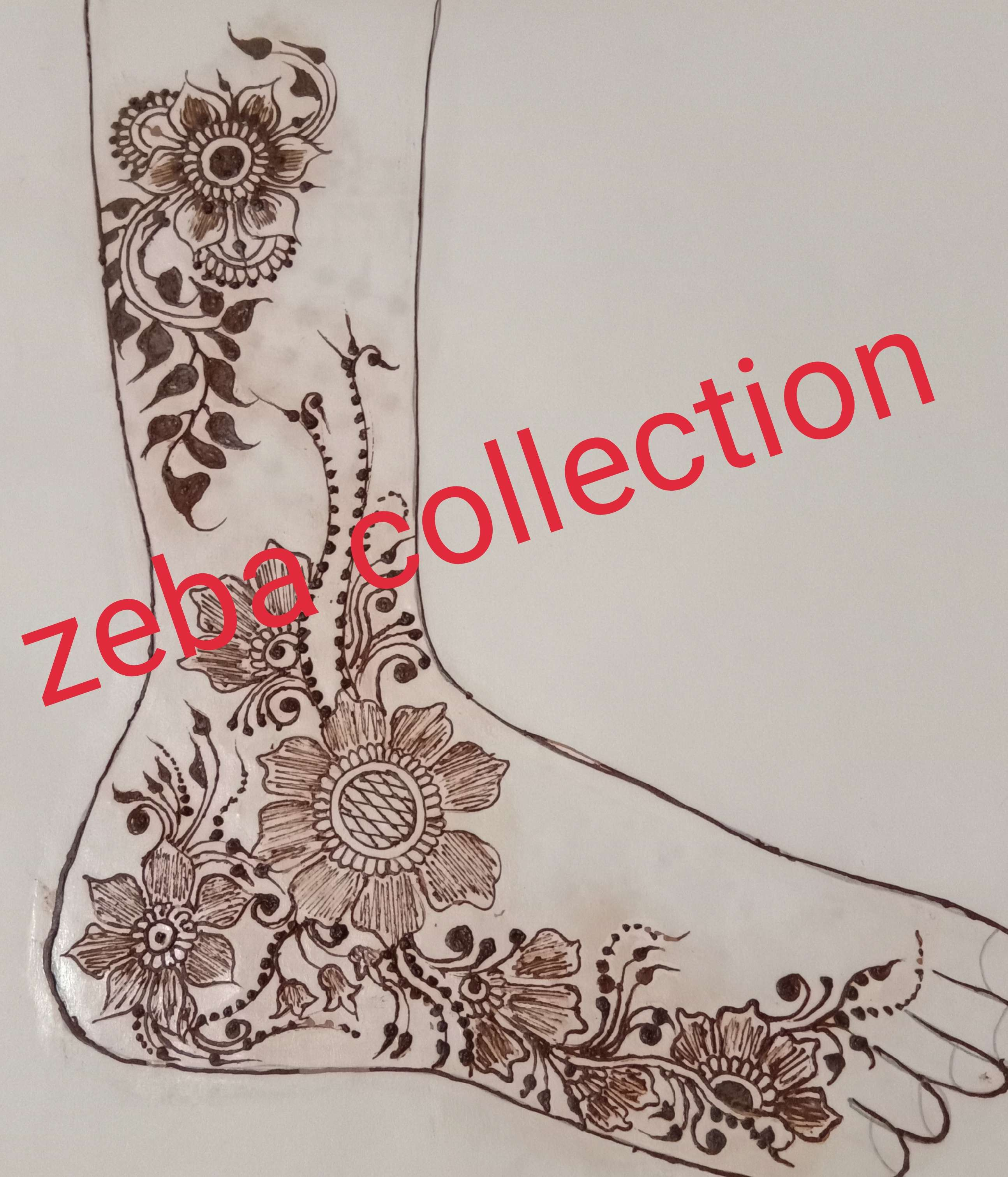 Portfolio - Zeba Mehndi Designer