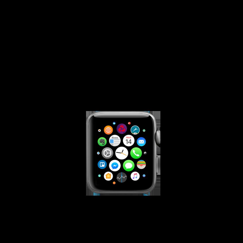 Apple Watch Series 3 (Aluminum, Aluminum, 38mm) / 16GB / MTGG2LL/A