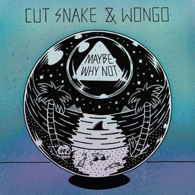 Cut Snake & Wongo - Maybe Why Not (ShoutSlice)