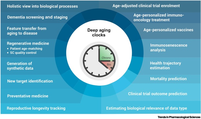 Deep Aging Clocks: The Emergence Of AI-Based Biomarkers Of Aging And Longevity