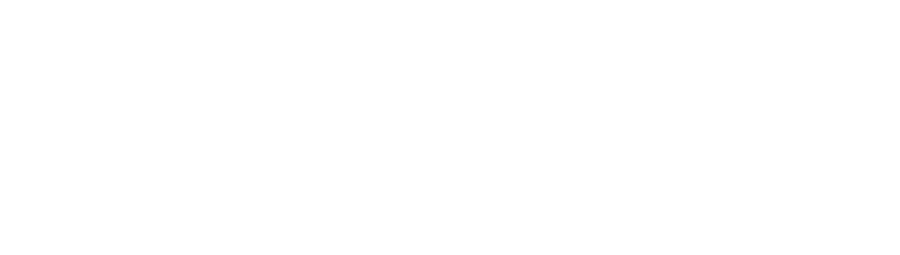 Signature Mobile Spa