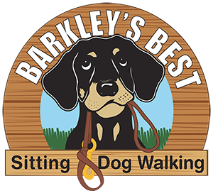 Best Sitting and Dog Walking
