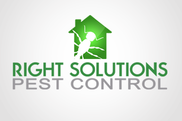 Right Solutions Pest Control