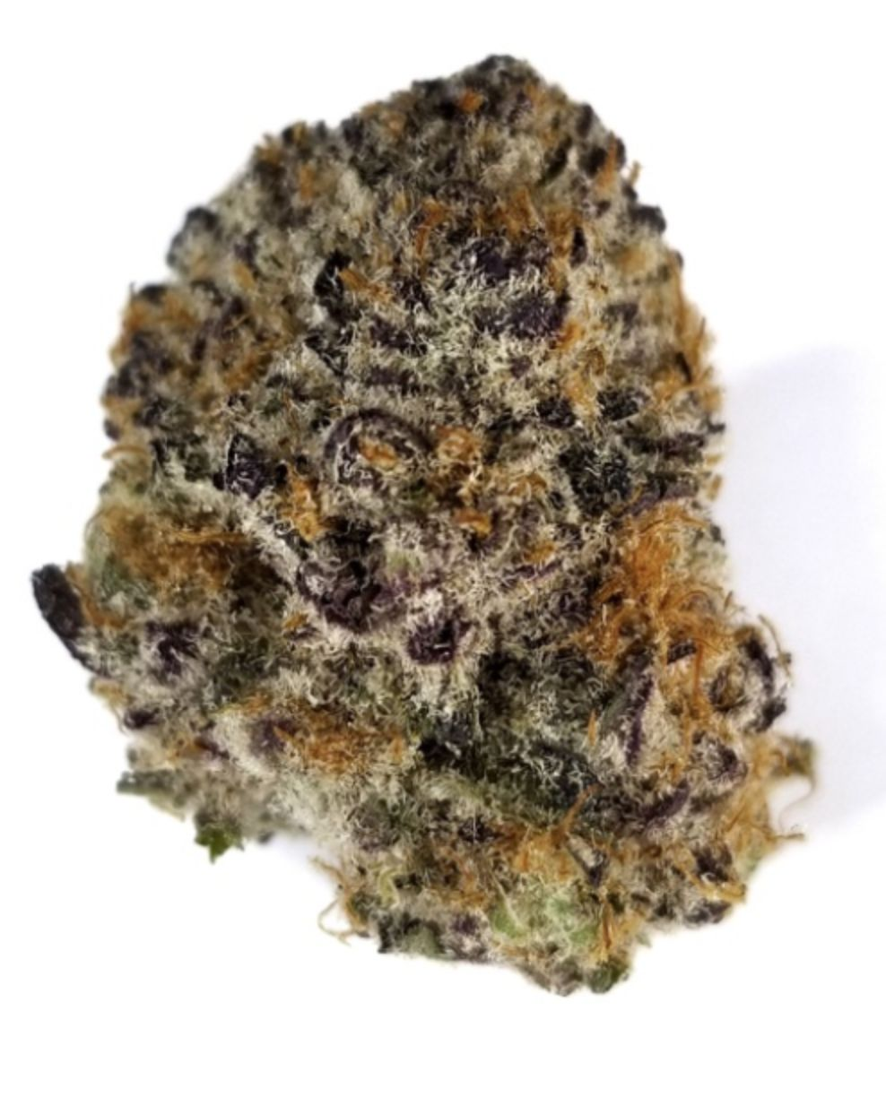Purple Punch- Hybrid