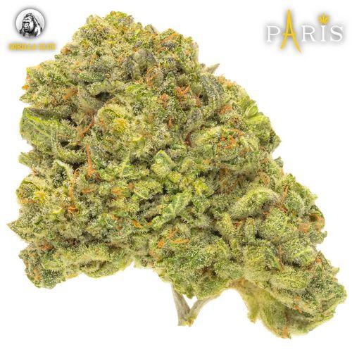 Paris: Gorilla Glue (1/8 Ounce)