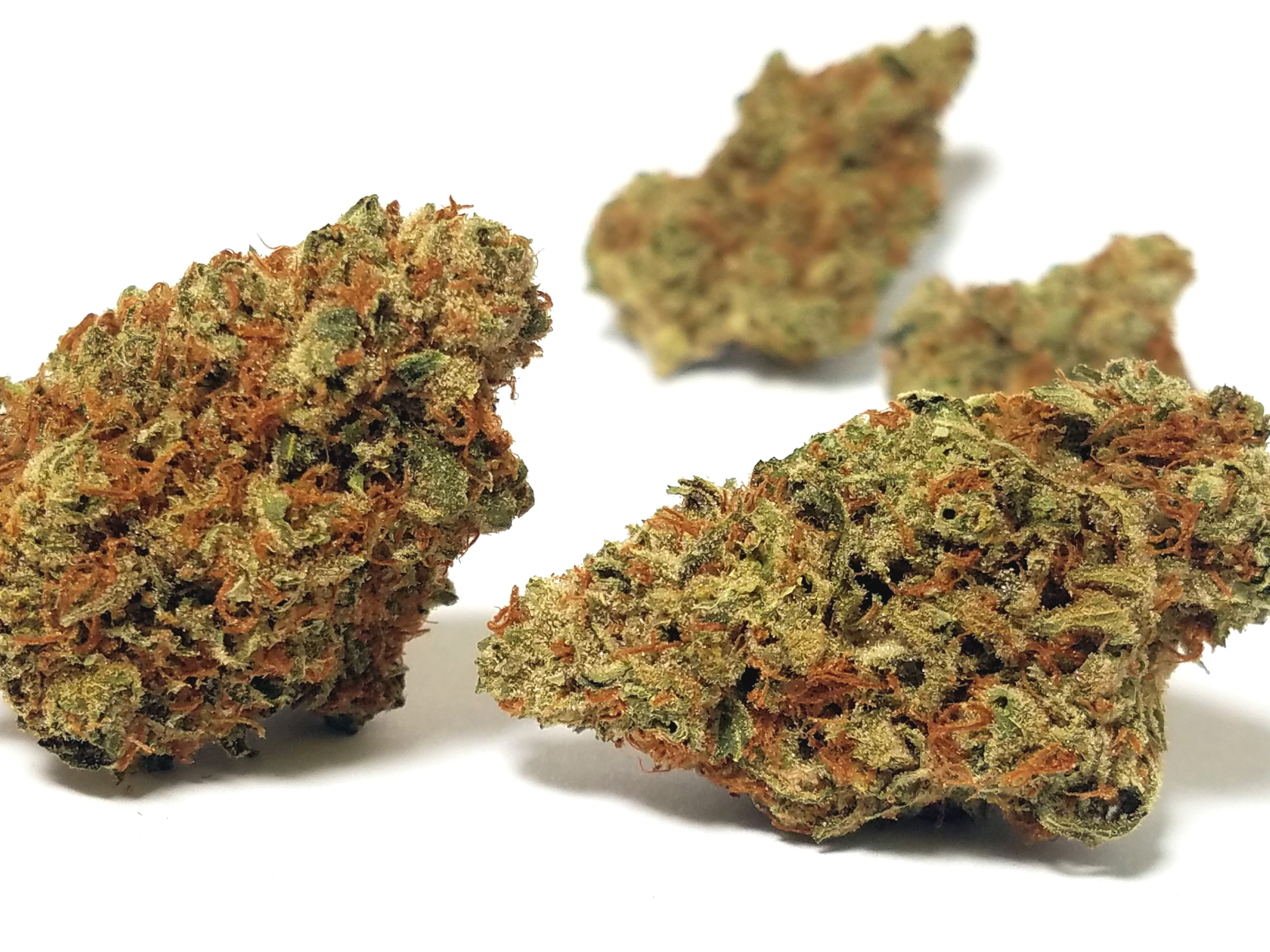 Herbal Dynamic - Golden Lemons, Indica Hybrid, Indoor