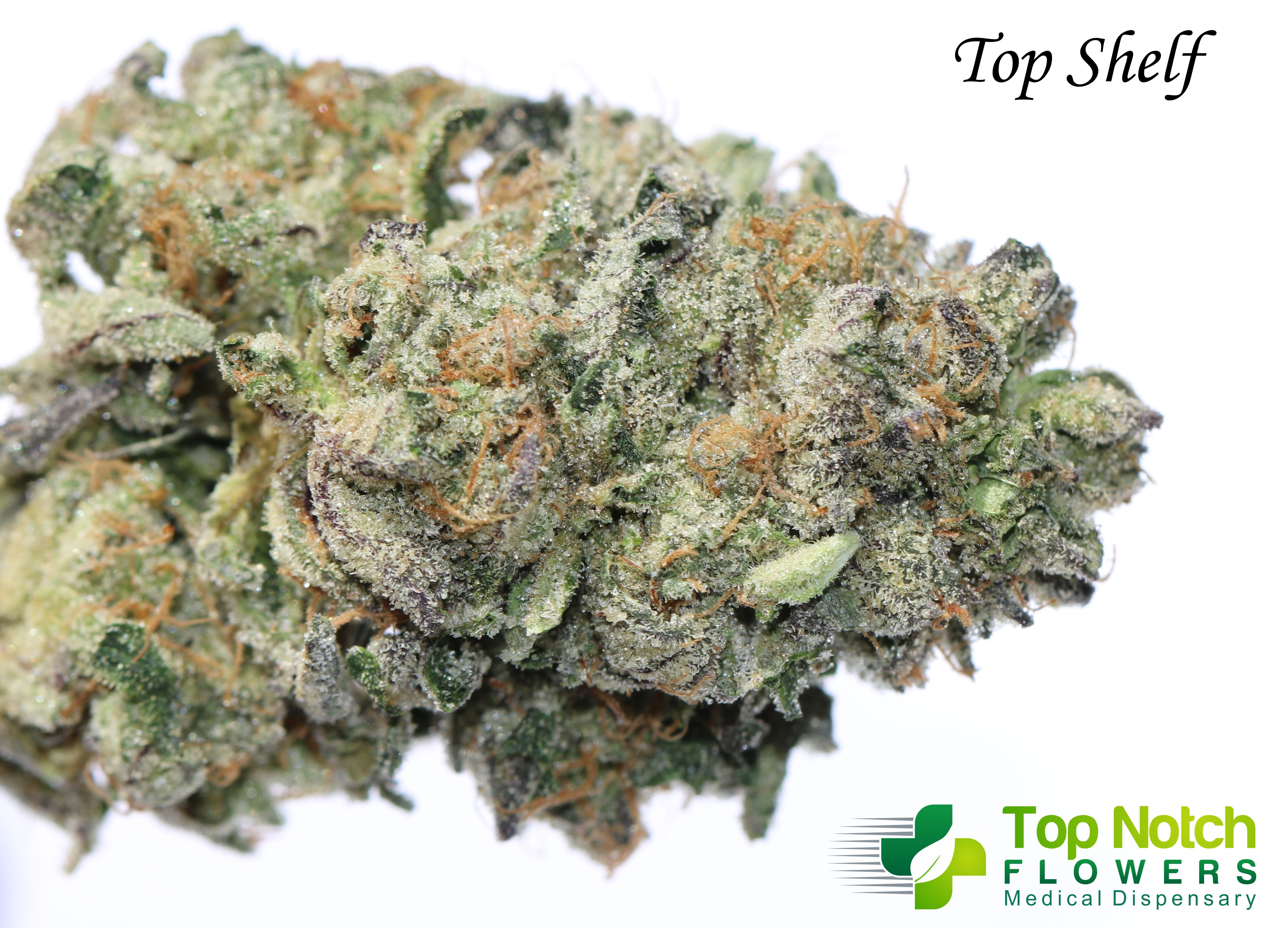 Top Shelf Larry Bird