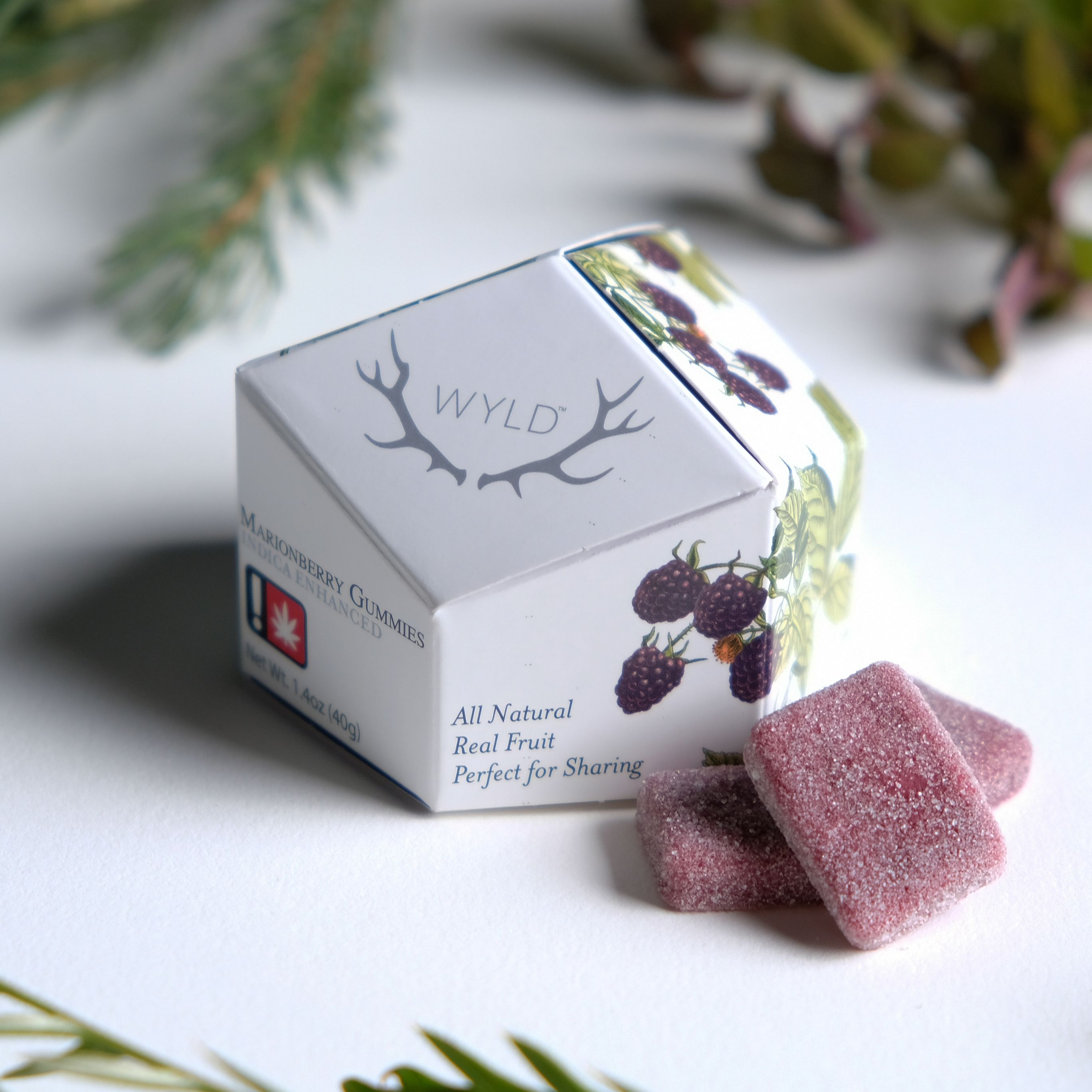Wyld - Marionberry Gummies (Indica)
