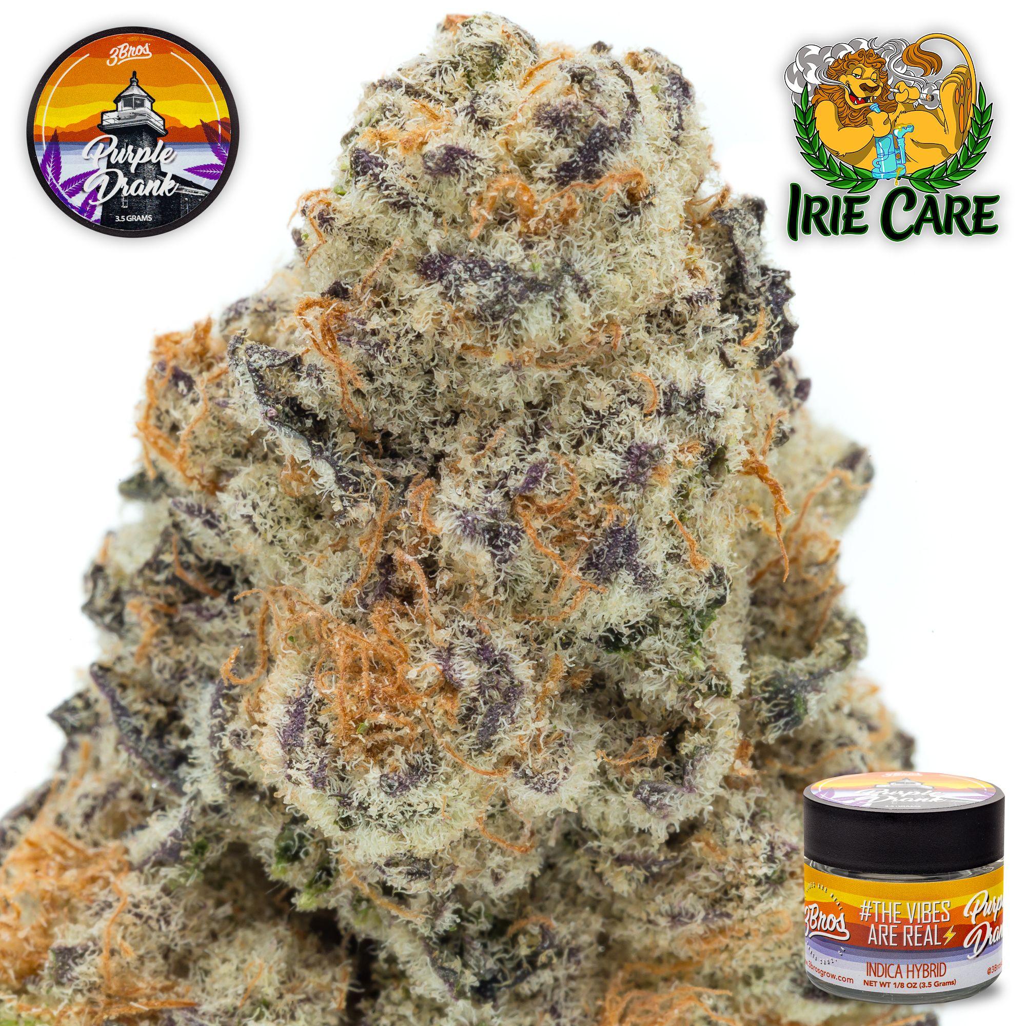 3Bros Grow - Purple Drank **PREMIUM TOPSHELF INDOOR**