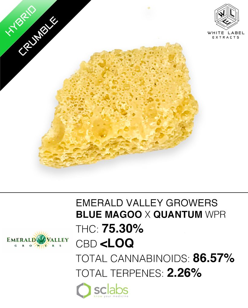 WLE - Blue Magoo x Quantum Kush WPR, Hybrid, Honeycomb