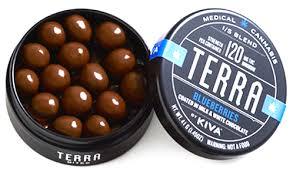 Terra Bites Blueberries 120mg